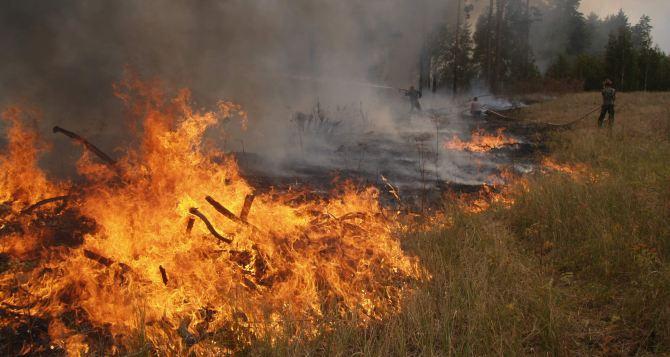 В самопровозглашенной ЛНР объявлен самый высокий класс пожарной опасности