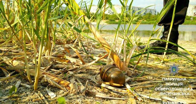 В Северодонецке на берегу озера Чистое нашли гранату (фото)