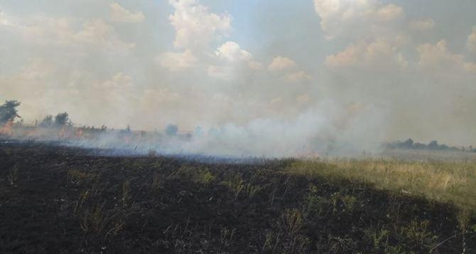 В Луганской области пожары охватили более 15 гектаров открытой местности (фото)