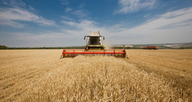 В Луганской области собрали 1 млн тонн зерна