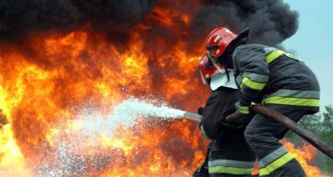 Режим тишины соблюдался по обе стороны во время ликвидации пожаров на Донбассе. —СЦКК