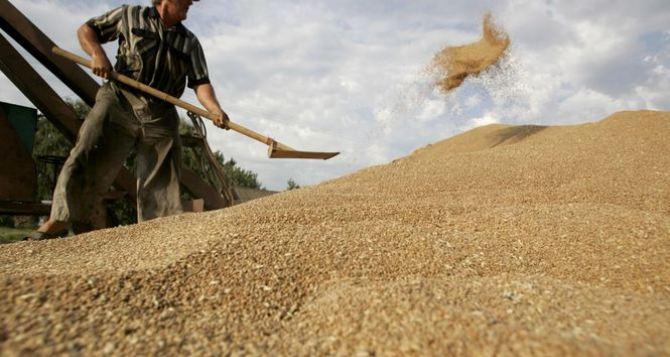 Аграрии отчитались о 220 тысячах тонн собранного зерна