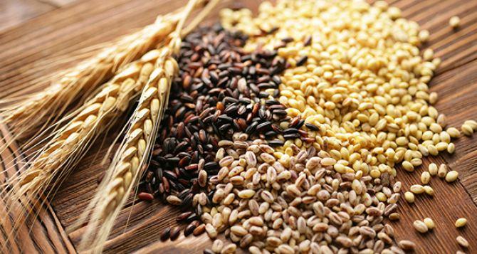Аграрии самопровозглашенной ЛНР отчитались об уборочной зерновых