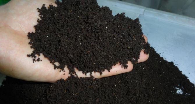 Использование биогумуса в качестве удобрения