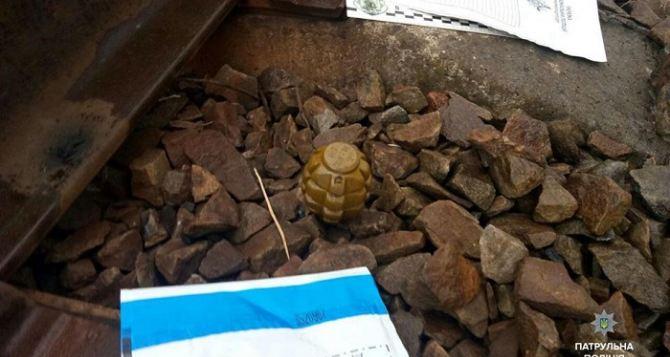 В Рубежном дети нашли боевую гранату во время игры у железной дороги