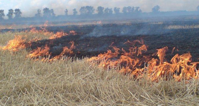 В Луганской области предупреждают о чрезвычайной пожарной опасности