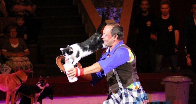 Луганский цирк открыл новый сезон благотворительным выступлением (фото)