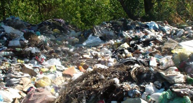 Коммунальщики Брянки устроили незаконную свалку недалеко от города (фото)