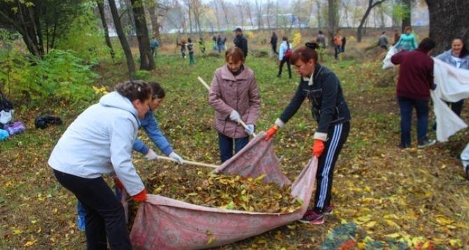 Луганчане массово приняли участие наведения порядка в парке имени Горького (фото)