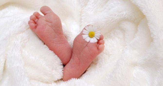 За неделю в Луганске родились без малого 60 детей