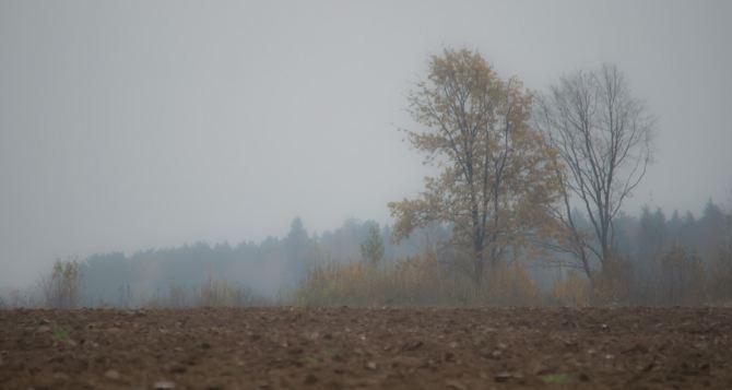 Прогноз погоды в Луганске на 10ноября
