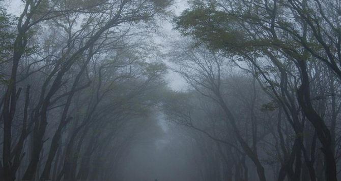 Прогноз погоды в Луганске на 11 и 12ноября