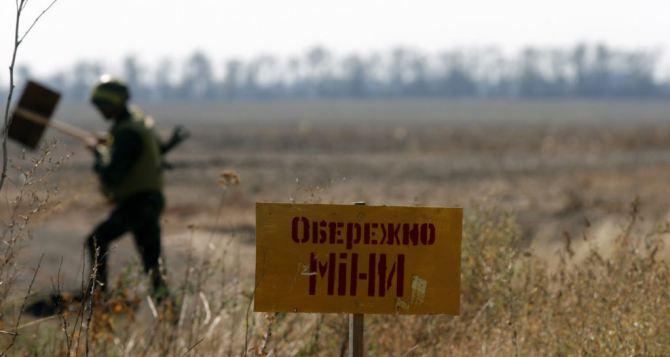 На разминирование Донбасса уйдут десятилетия,— эксперт из Госдеп