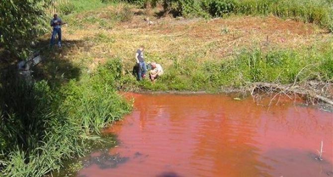 Река Белая стала красного цвета в Алчевске