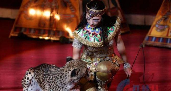 Красочным шоу гепардов и попугаев открыл сезон Луганский цирк