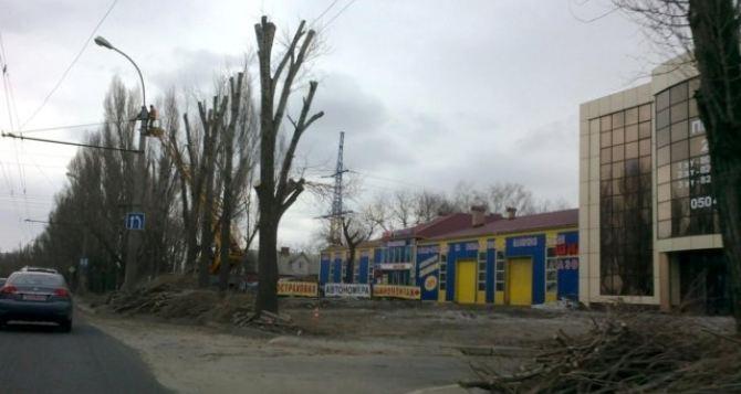 Коммунальщики до конца недели завершат плановую обрезку деревьев