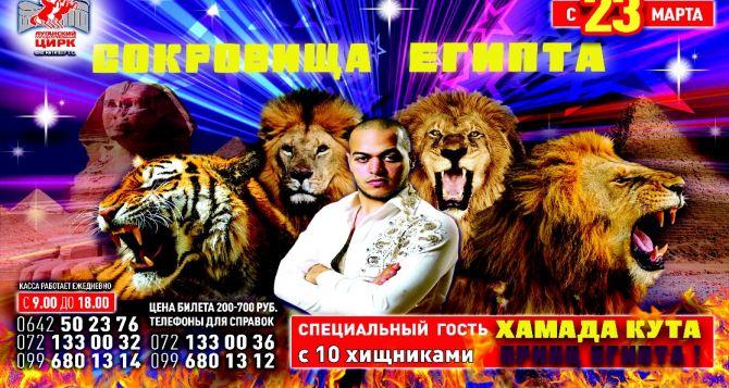 Лев напал на дрессировщика во время выступления в Луганском цирке. ВИДЕО
