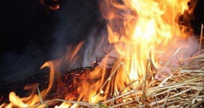В Станично-Луганском районе горела трава