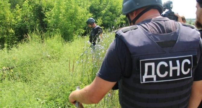 У Станицы Луганской уже обезврежено 708 взрывоопасных предметов