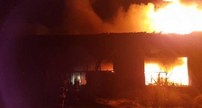 Предотвратили угрозу взрыва. На Луганщине ночью горел завод. Видео