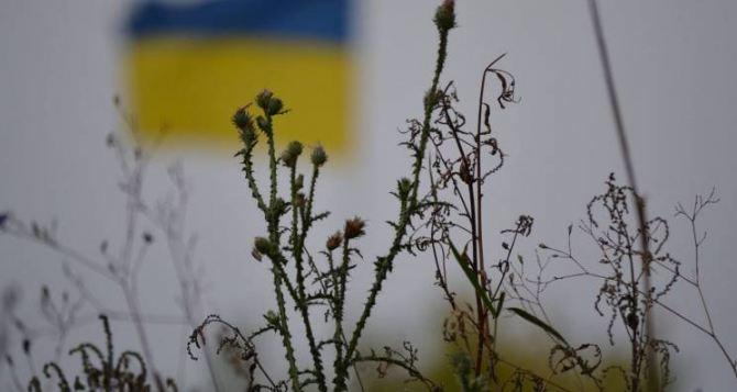 У Зеленского считают, что Донбассу придется дать особый статус