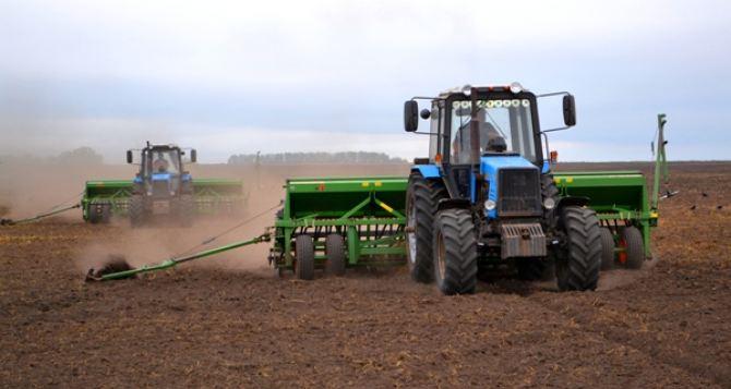 Аграрии подготовили к севу озимых культур более 80% посевных площадей