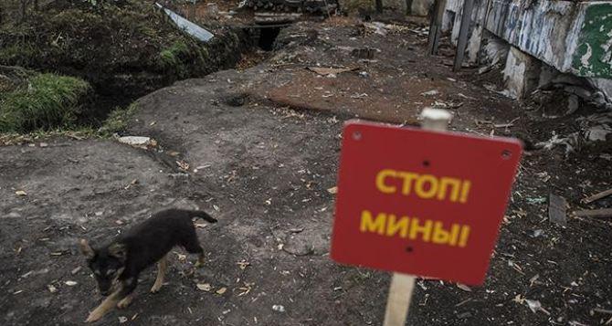 С начала года 143 жертвы среди мирных жителей Донбасса
