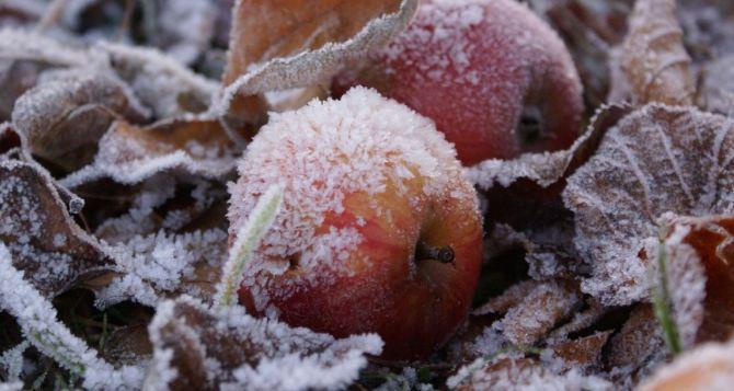 Послезавтра ночью резко похолодает до минус 11 градусов на всей территории Луганщины