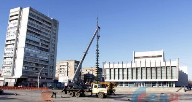 В Луганске на Театральной площади начали устанавливать традиционную новогоднюю елку. Проезд для авто закрыт