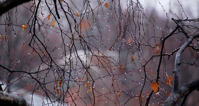 Прогноз погоды в Луганске на 27ноября