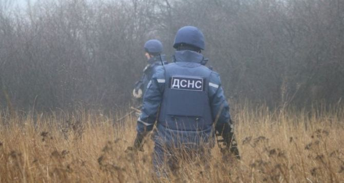 На Луганщине за сутки пиротехники нашли более 20 гранат