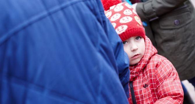 Детей переселенцев на Украине будут кормить бесплатно