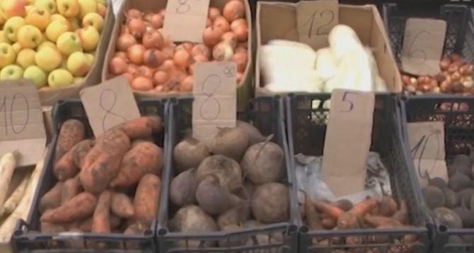 «Индекс борща»: в Луганской области цены на овощи снизились