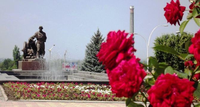 . Город— сад. В прошлом году в Луганске высадили почти 2 тысячи кустов роз