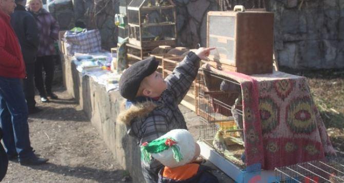 В луганском Парке им.1мая состоялась традиционная выставка птиц. ФОТО