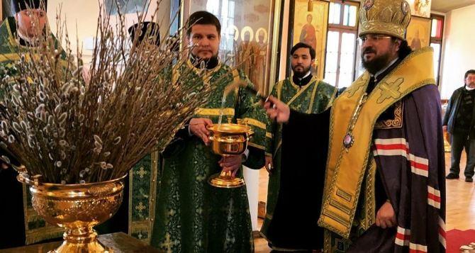 Верующие, по благословению Патриарха, могут освятить вербы дома