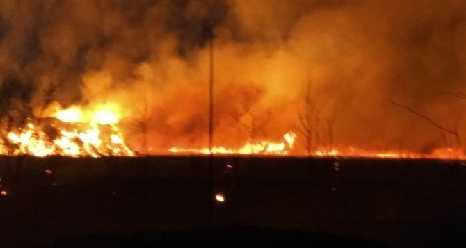 В МЧС рассказали про ночной пожар в Луганске: огонь охватил почти 40 гектаров