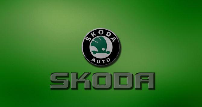 Значение эмблемы Skoda и способы её замены