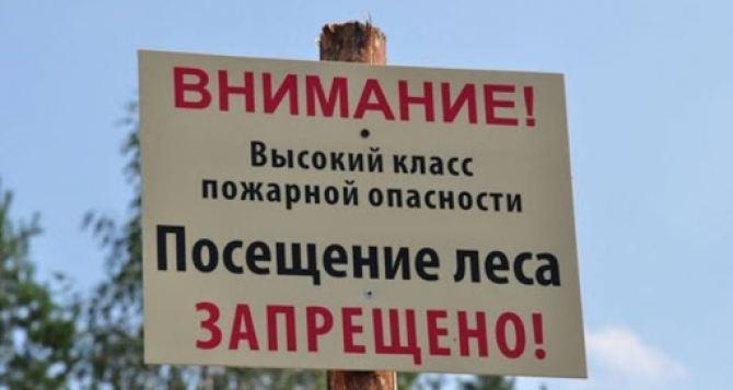В Луганске объявили запрет на посещение лесов
