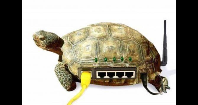 Скорость интернета «Лугаком» увеличилась на 50%