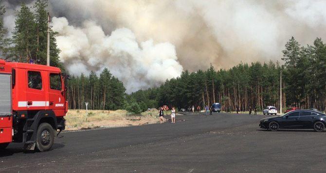 Масштабы трагедии. Лесной пожар в Смоляниново— Северодонецк— Новоайдар (видео)