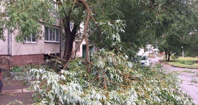 В Луганске объявили штормовое предупреждение: буря с грозой