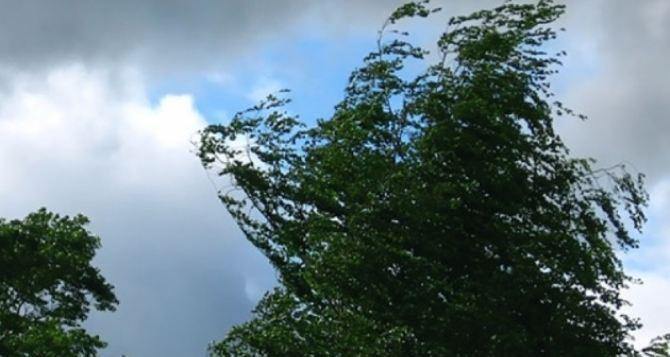 На территории всей Луганской области объявили штормовое предупреждение— желтый уровень опасности