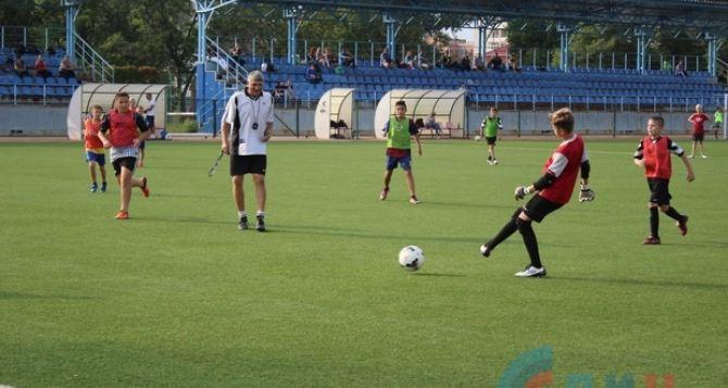 Из двух футбольных школ олимпийского резерва в Луганске создали «Футбольную школу детей и молодежи»