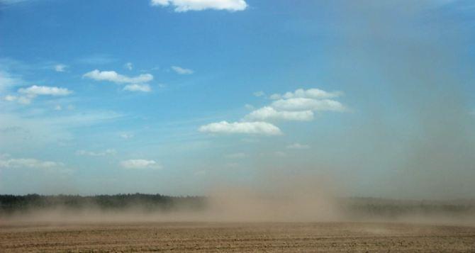 Суховей в районе Луганска зафиксировали метеорологи