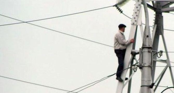 Пять населенных пунктов в Луганской области остались без электричества