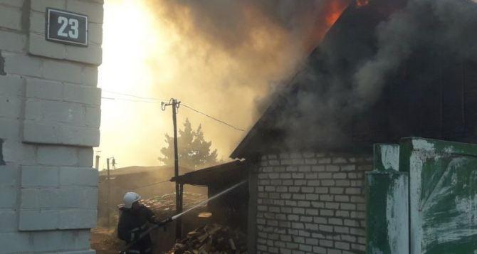 Зеленский собрал срочное совещание по поводу лесных пожаров в Луганской и Харьковской областях