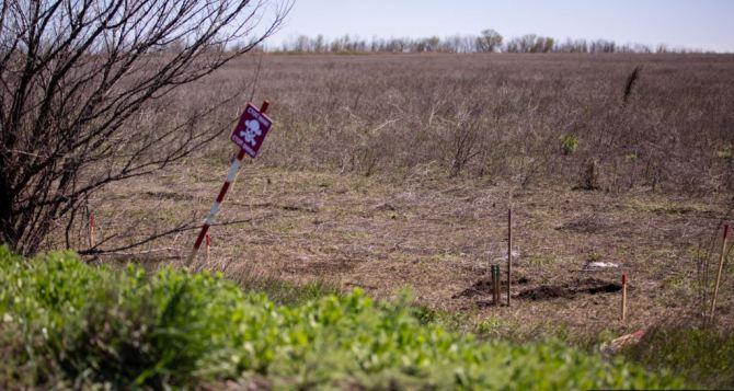 Житель Донбасса пытался пересечь линию разграничение вне КПВВ и подорвался на мине