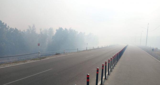 Большинство лесных пожаров в этом районе ликвидировали, однако КПВВ до сих пор был закрыт,— СММ ОБСЕ