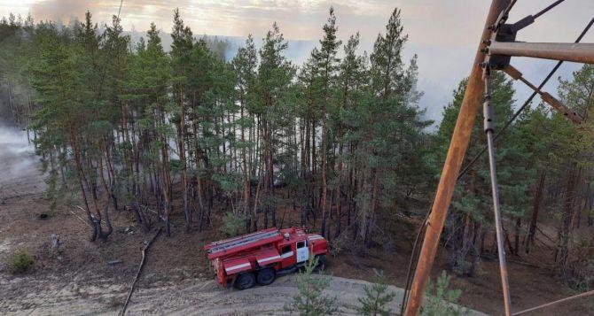 В Луганской области продолжают тушить масштабный пожар. Говорят, что остался один очаг